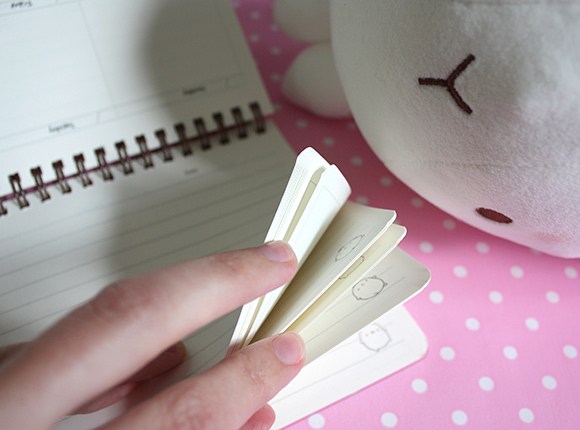 Molang Diary Planner and Plush