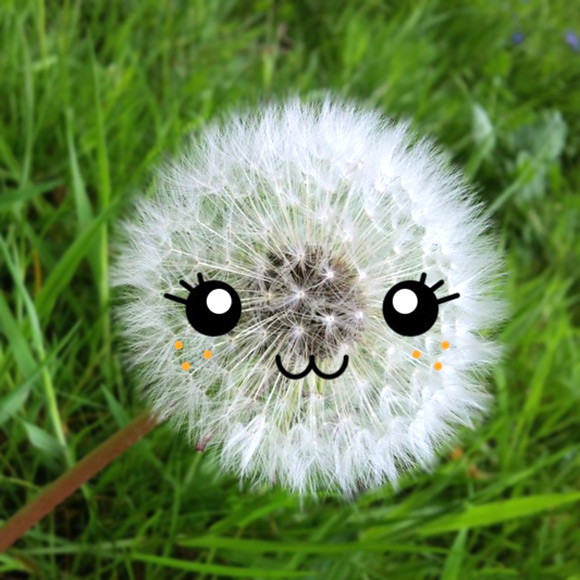 Cute Photo app - Tiny Faces